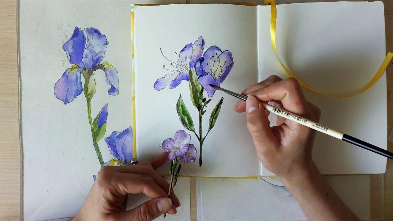 Мастер класс акварель цветы видео