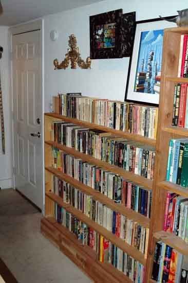 Fabulous 13 Excellent Paperback Bookcase Image Ideas Bookcase In Download Free Architecture Designs Embacsunscenecom