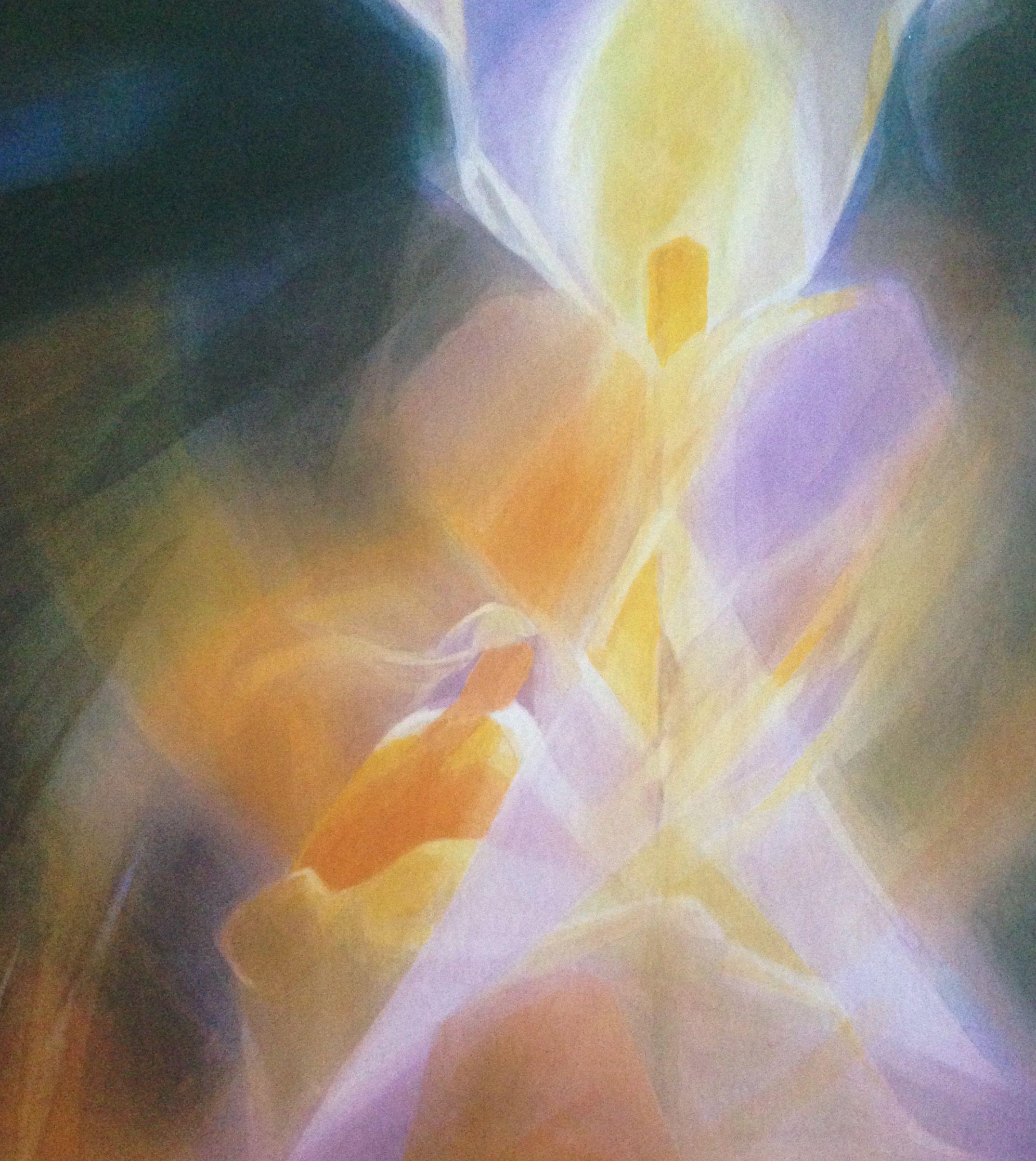 Amselhof Kunstdrucke liane collot d herbois veil paintings veil