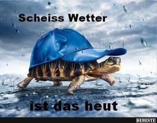 Scheiss Wetter Ist Das Heut Lustige Bilder Pinterest