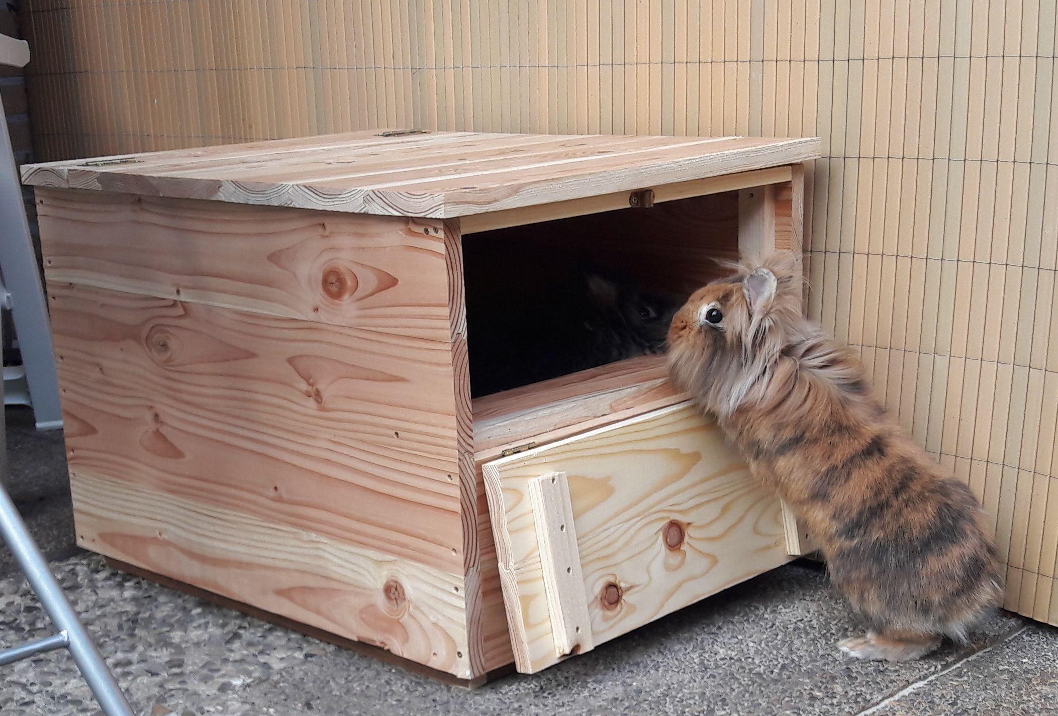 Buddelkiste Fur Aussen Kaninchen Kaninchen Freigehege Kaninchen Zubehor