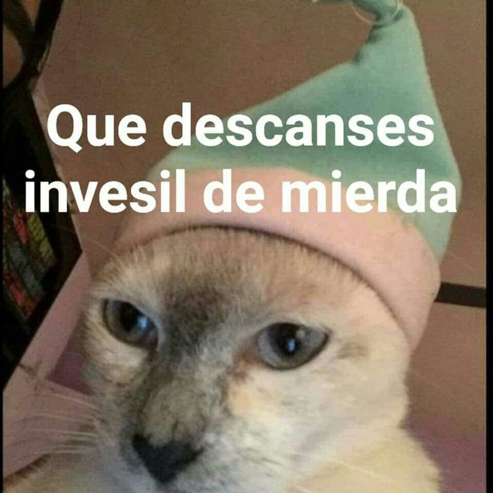 Pin De Dayana Espinosa En Memes Memes Atrevidos Memes Memes Originales