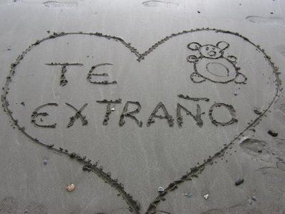 Te extraño.I miss you in spanish. | Random | Be yourself quotes