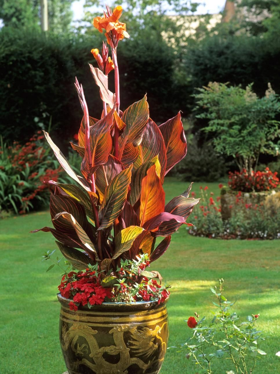 Using Large Garden Pots | Large flower pots, Plants and Large garden ...