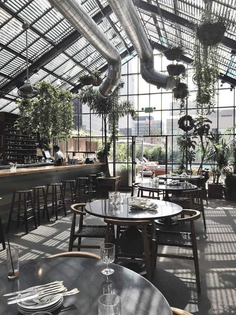 hypothesis turns warehouse into plant-filled vivarium restaurant
