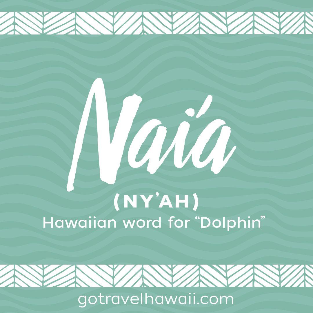 Nai'a - Hawaiian Word - Dolphin | Hawaiian words | Hawaiian baby