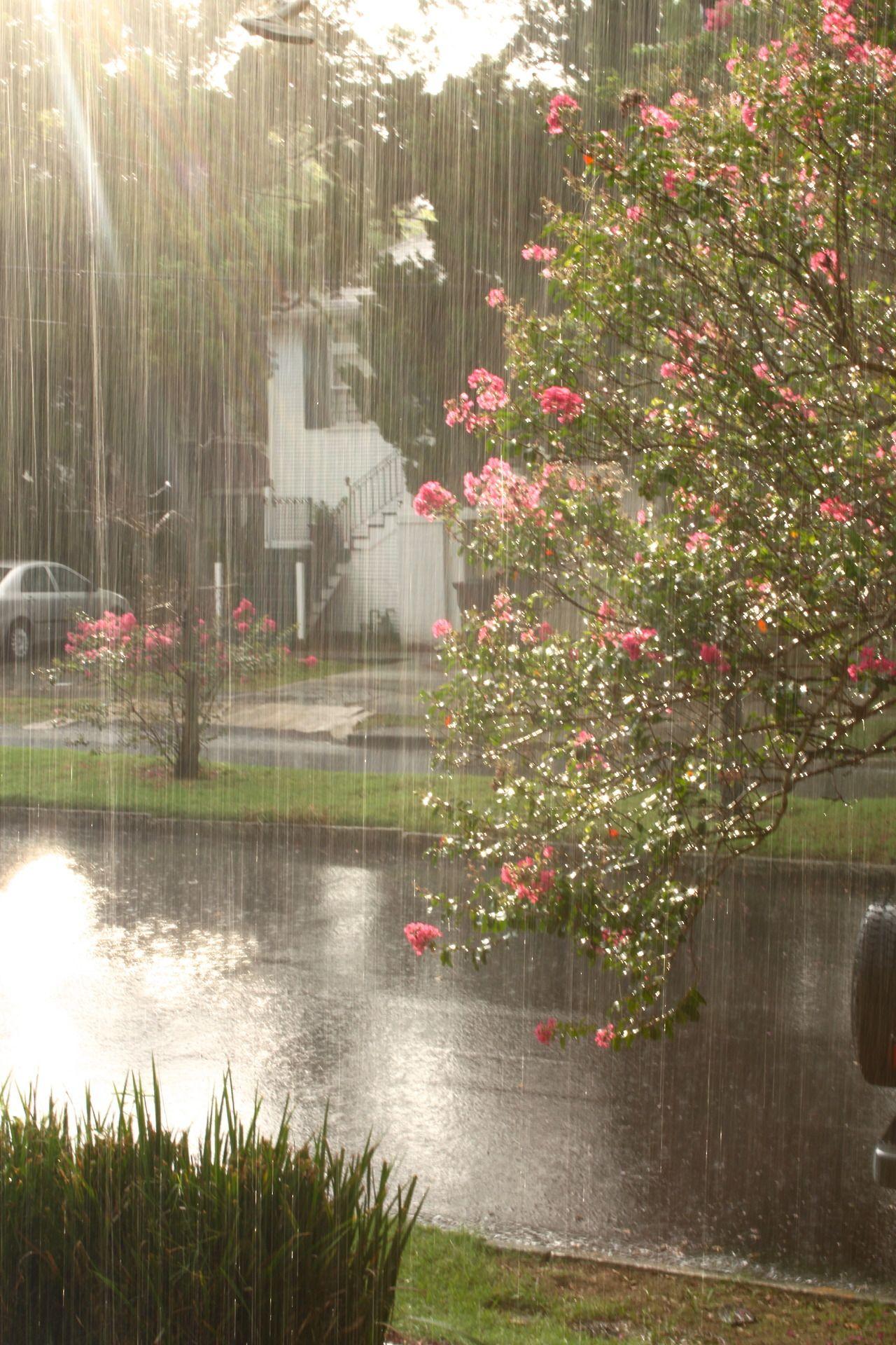 готовы доброе утро после дождя картинки вырывать или выбивать