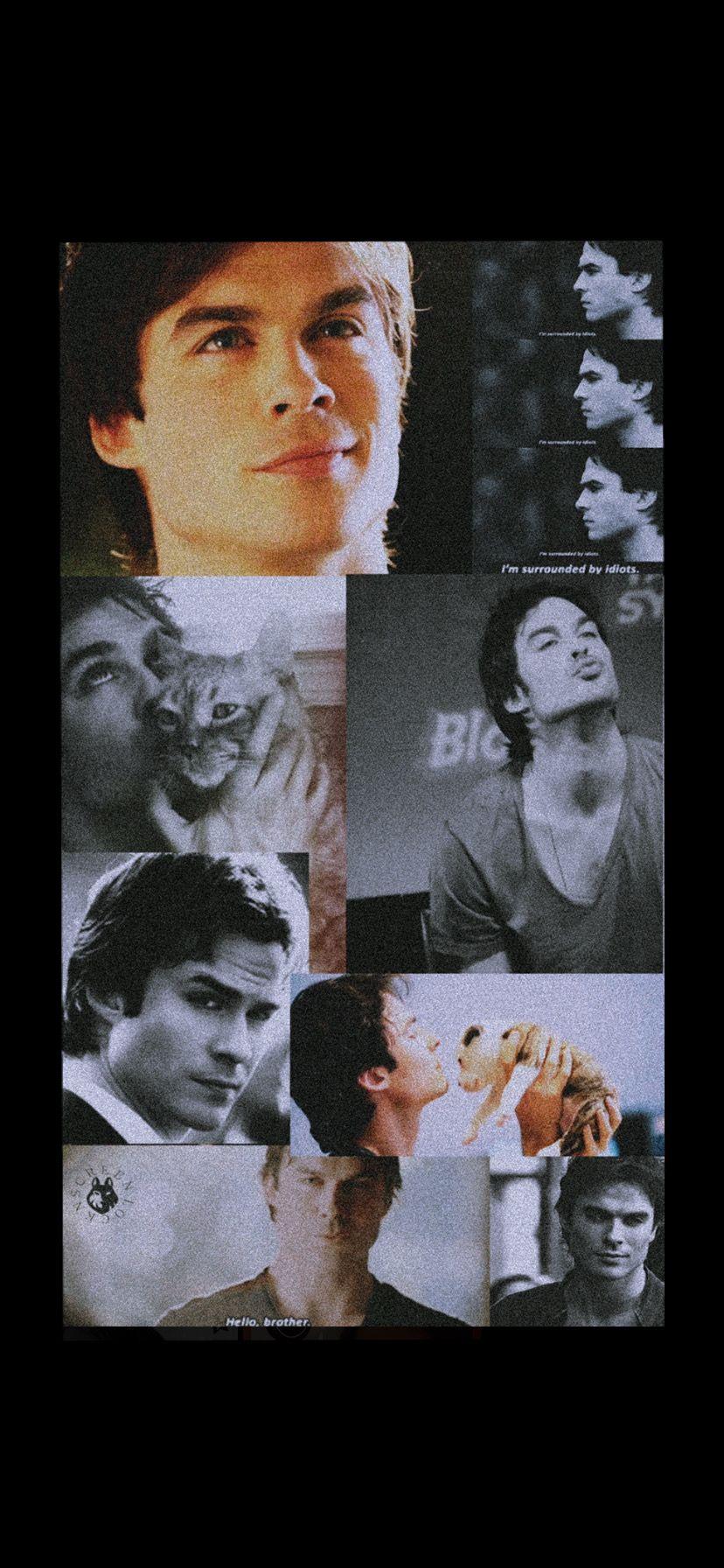 Damon Salvatore Wallpaper Vampire Diaries Damon Damon