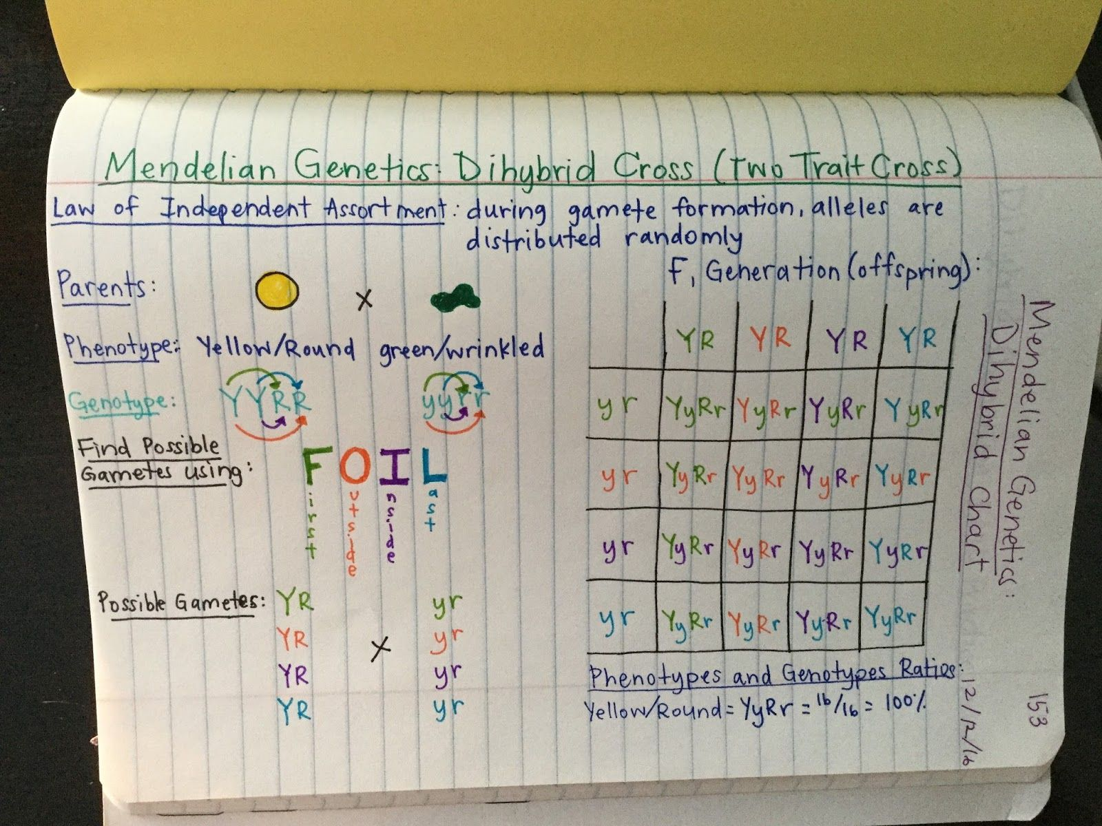 Genetics Unit Edpuzzle Videos Amoeba Sisters Foil Method