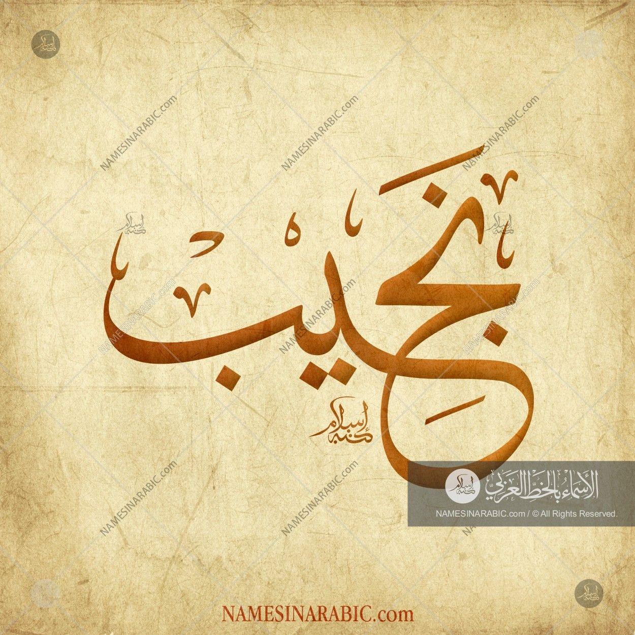 Najeeb نجيب Names In Arabic Calligraphy Name 3559 Calligraphy Name Calligraphy Arabic Calligraphy Art