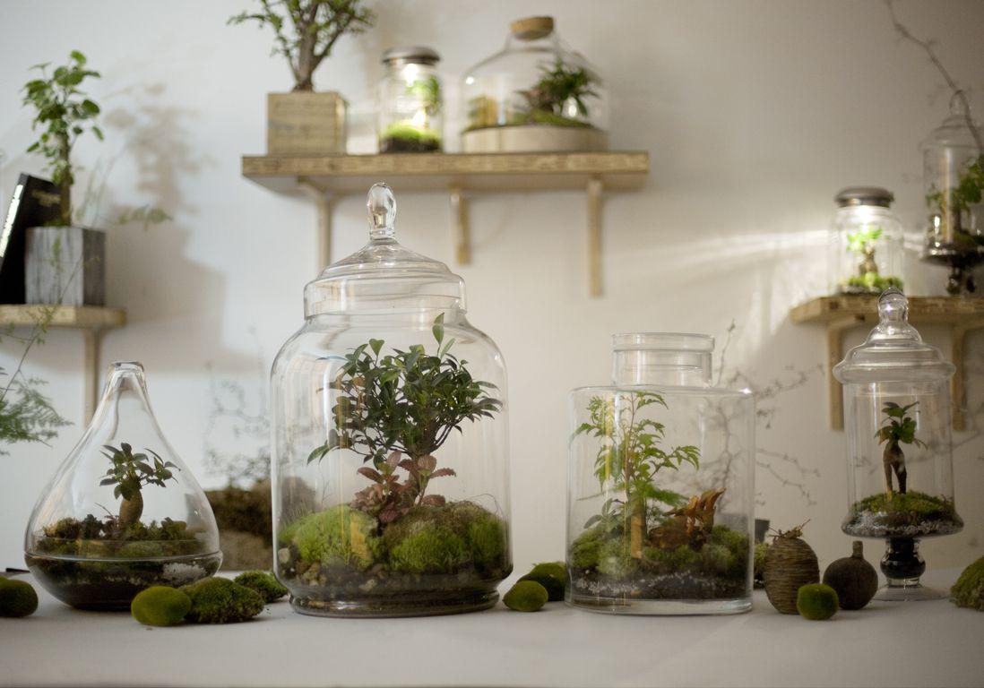 Diy notre mode d emploi du terrarium grands retours - Tomber enceinte pendant le retour de couche ...