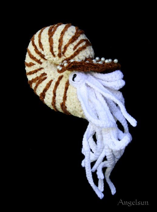 Hawaii Hyberbolic Coral reef crochet project, including realistic nautilus pattern