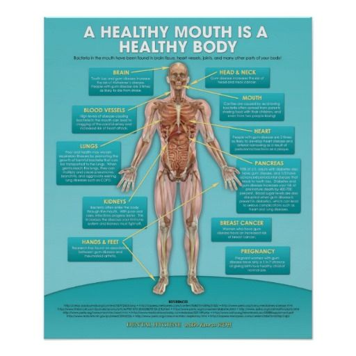 Oral Hygiene and the Body http://www.jescobardds.com