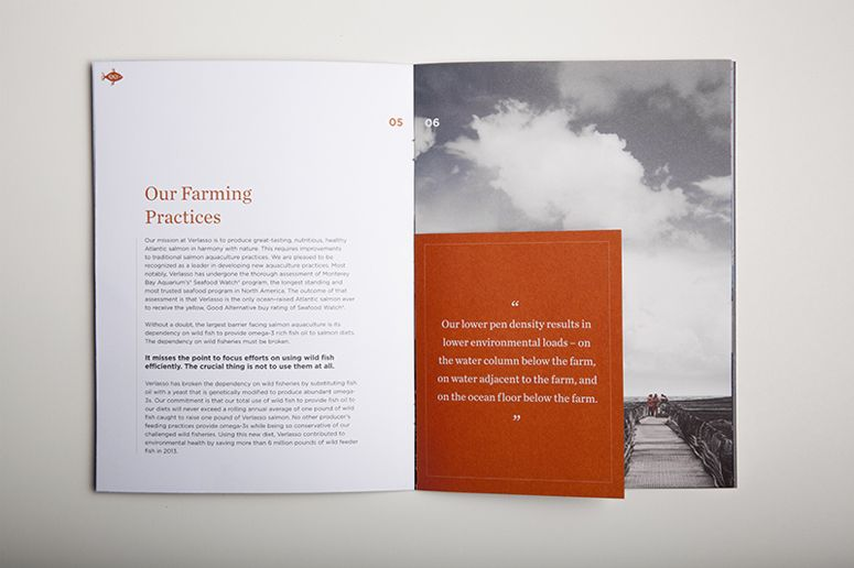 Verlasso Sustainability Brochure -- different sized paper to call - law firm brochure