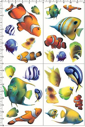 Aquarium Fishes ท ศนศ ลป ปลา ส ตว