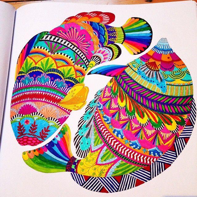 Piyosha S Instagram Posts Pinsta Me Instagram Online Viewer Animal Kingdom Colouring Book Millie Marotta Animal Kingdom Millie Marotta Coloring Book