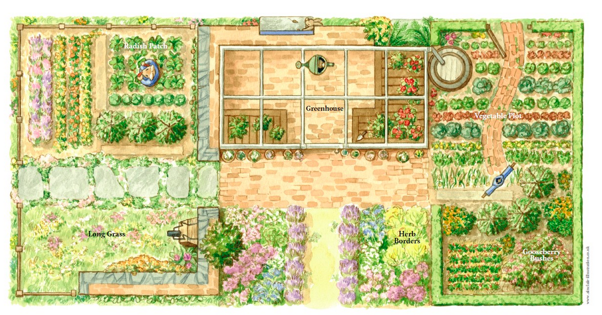 Garden plan.   Chelsea flower show, Rabbit garden ...
