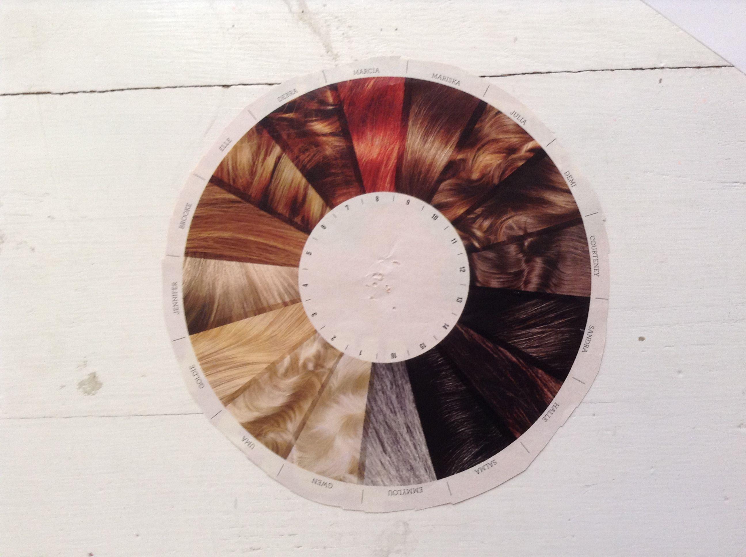 Hair Color Wheel Cool  B R U S H E D  Pinterest