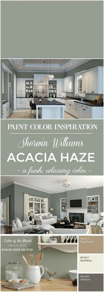 Sherwin Williams Acacia Haze Paint Color images