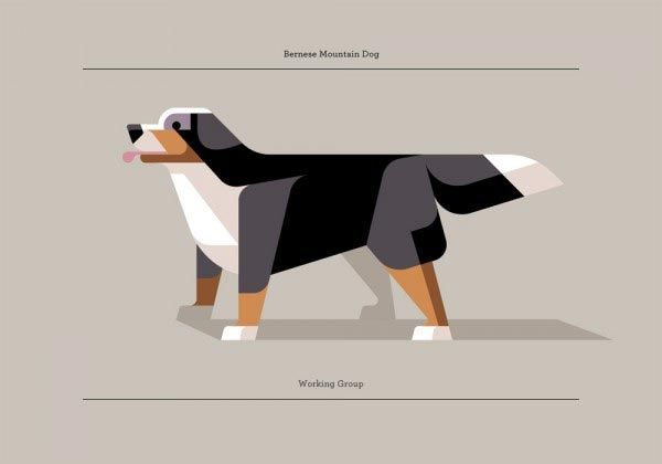 Minimalistic Geometric Dog Dog Illustration Dog Breed Poster