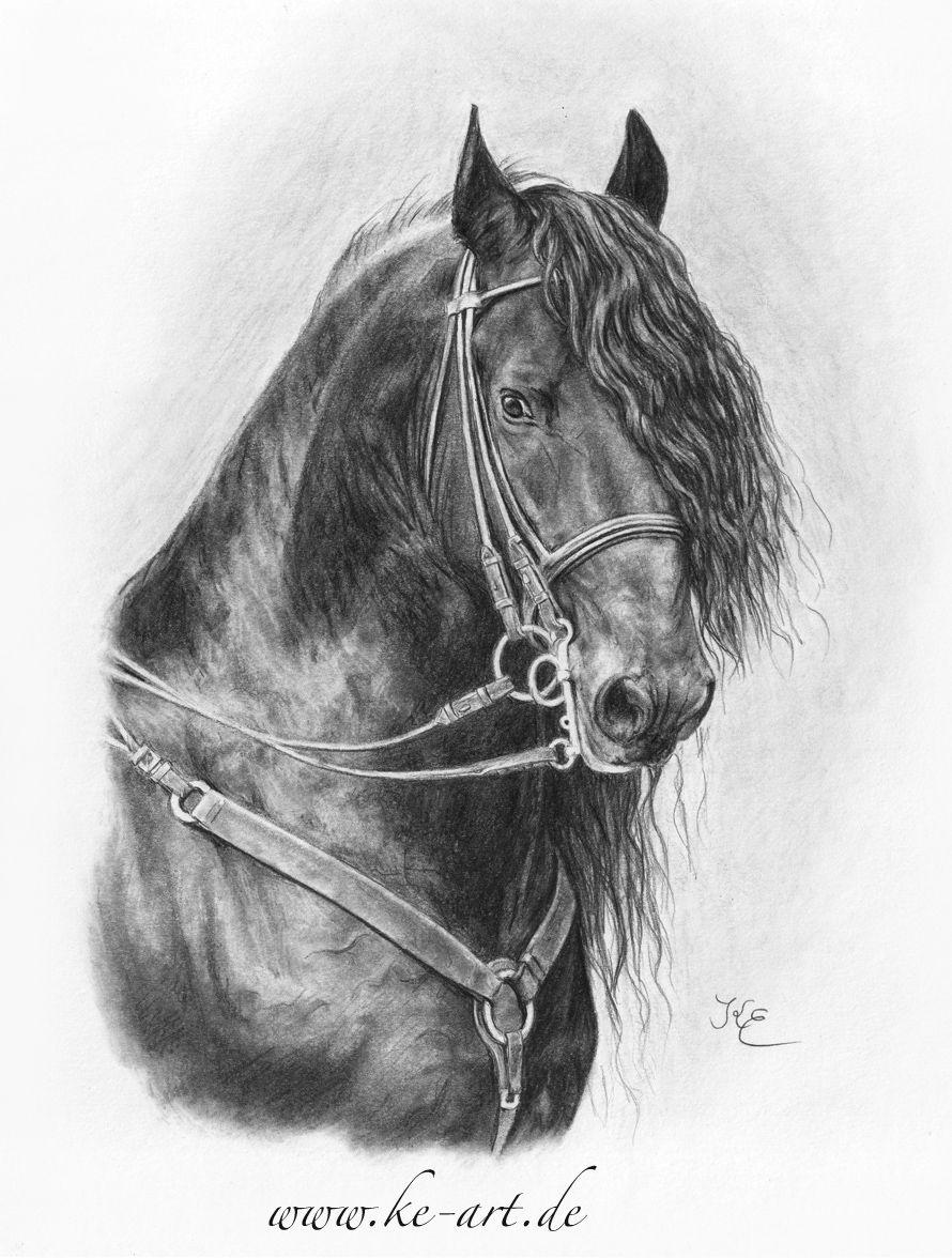 Friesien stallion by Katja Eichhorn
