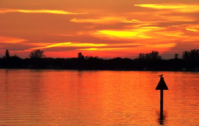 11.26.12 Pic taken at sunset of Lemon Bay from a tiny park ...