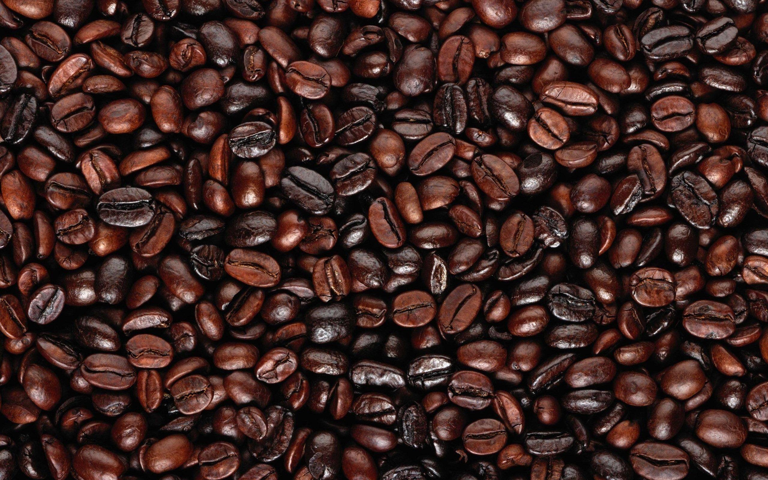 Coffee Beans Hd Wallpaper   Aurora-awards.com