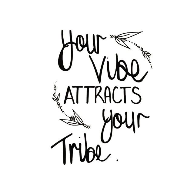 Good Vibes Quotes New Your Vibe Attracts Your Tribe  Quotes  Pinterest  Captions