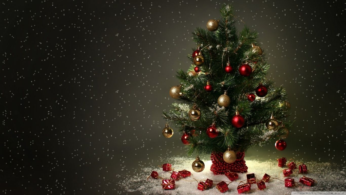 small christmas tree hd desktop wallpaper : high definition | best