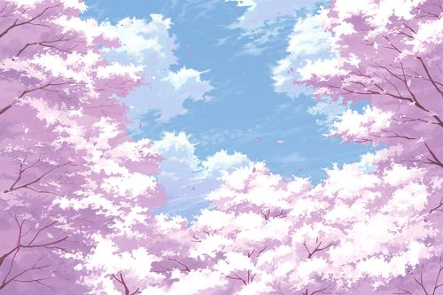 Sky Backgrounds Cherry Blossom Wallpaper Anime Cherry Blossom Anime Scenery Wallpaper