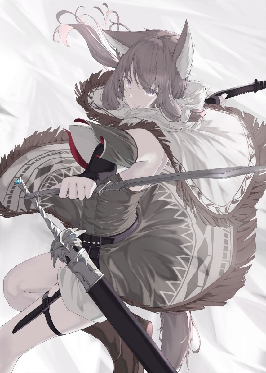 Beast Earsarmed Girlshaihatsugirlcape Anime Wolf Girl Anime Warrior Anime Art Girl