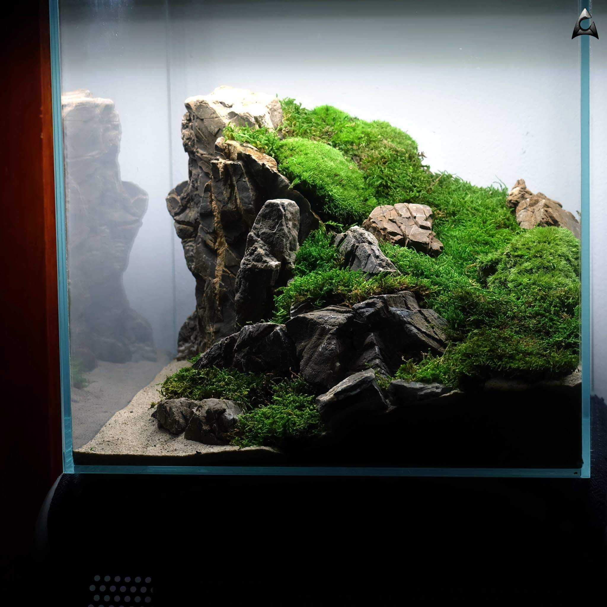 Diy Fish Tank Decorations Themes Aquascaping Fresh Water Decor Ideas Small Aquascaping Homemade Creative Aquascap Aquarium Landscape Aquascape Diy Fish Tank