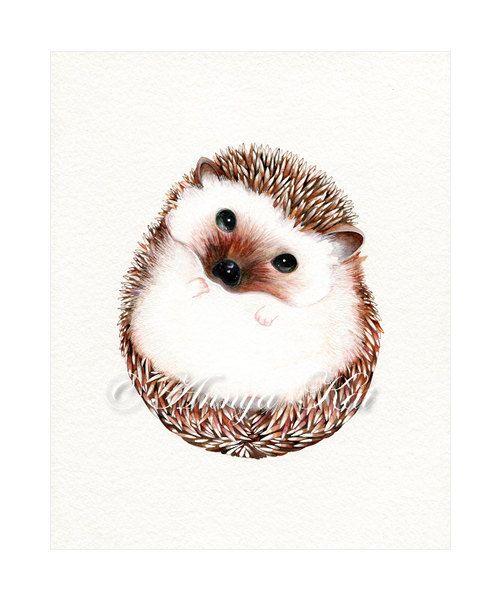 Hedgehog Art Print - Watercolor Woodland Animal Il