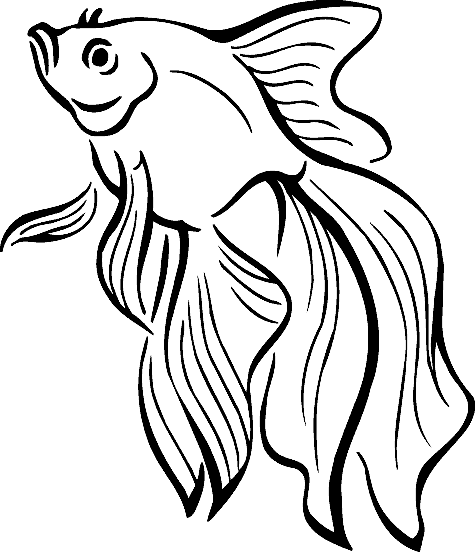 Realistic Tropical Fish Coloring Pages Clipart Panda Free Clipart Images Fish Coloring Page Fish Drawings Coloring Pages