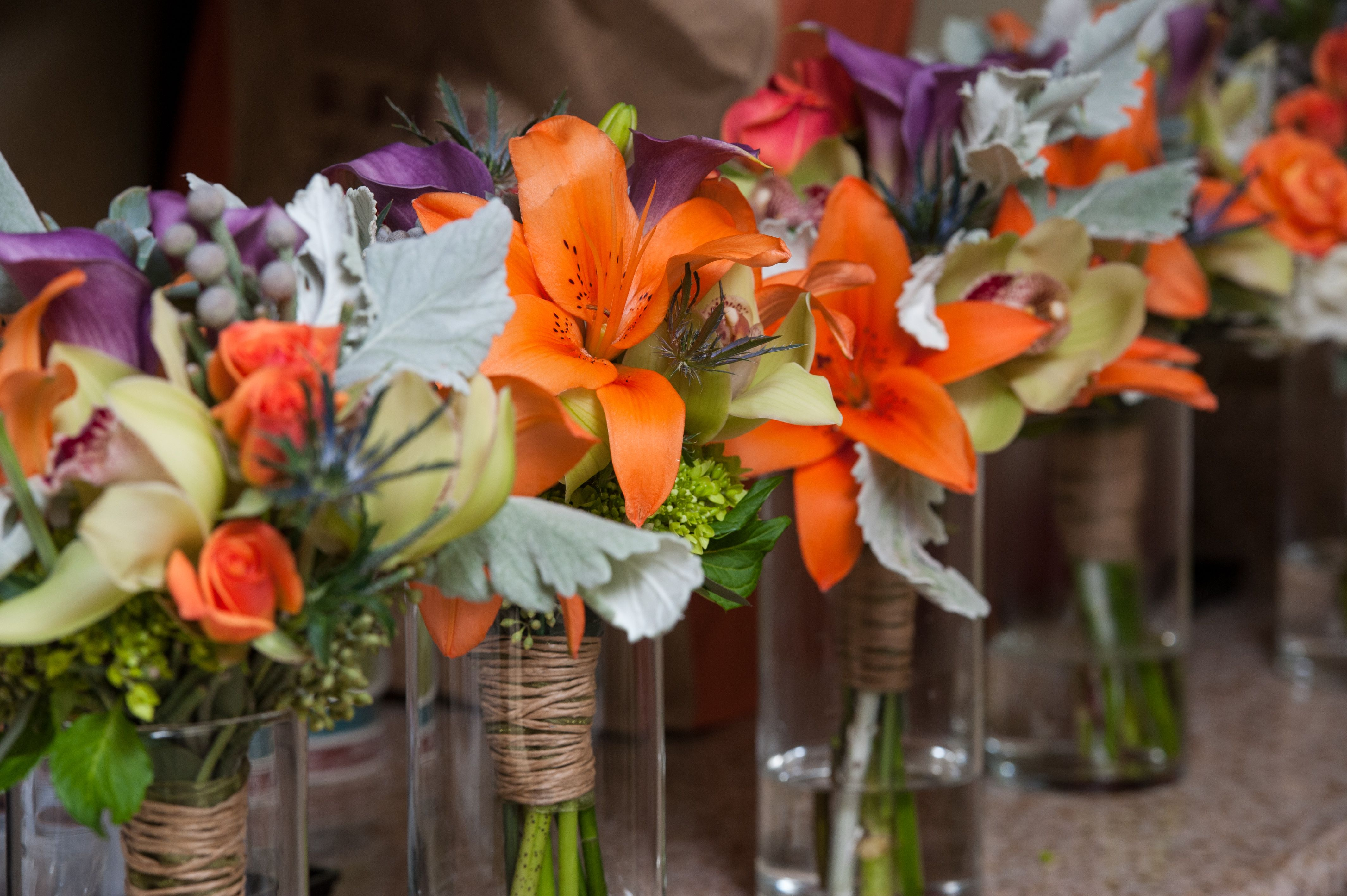 Bright and bold colored flowers that look beautiful in any setting!