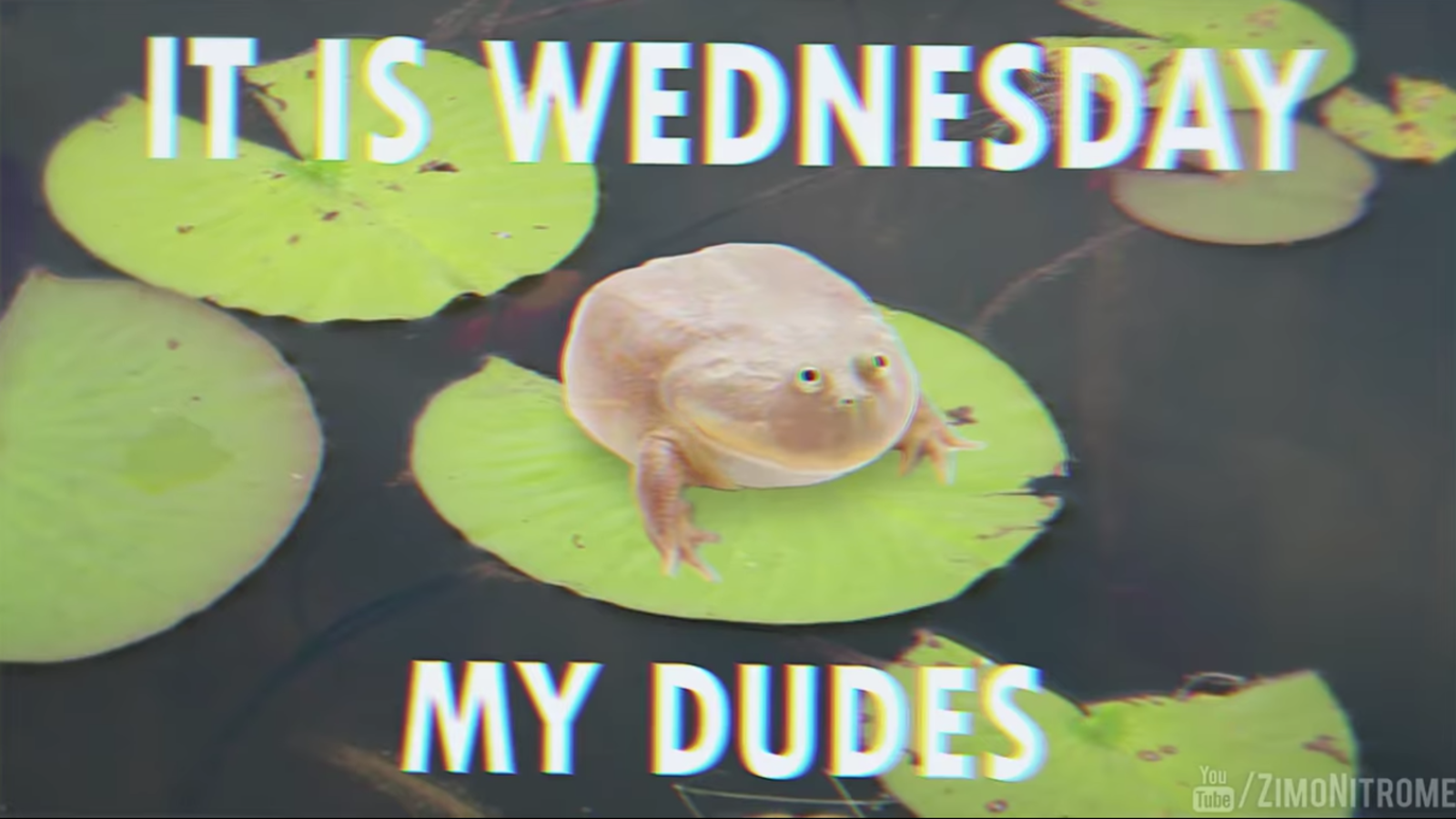 Set A Different Alarm For Every Day Of The Week Wednesday Song Cute Memes Screaming Frog