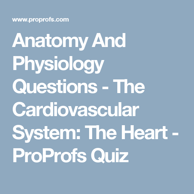Anatomy And Physiology Questions