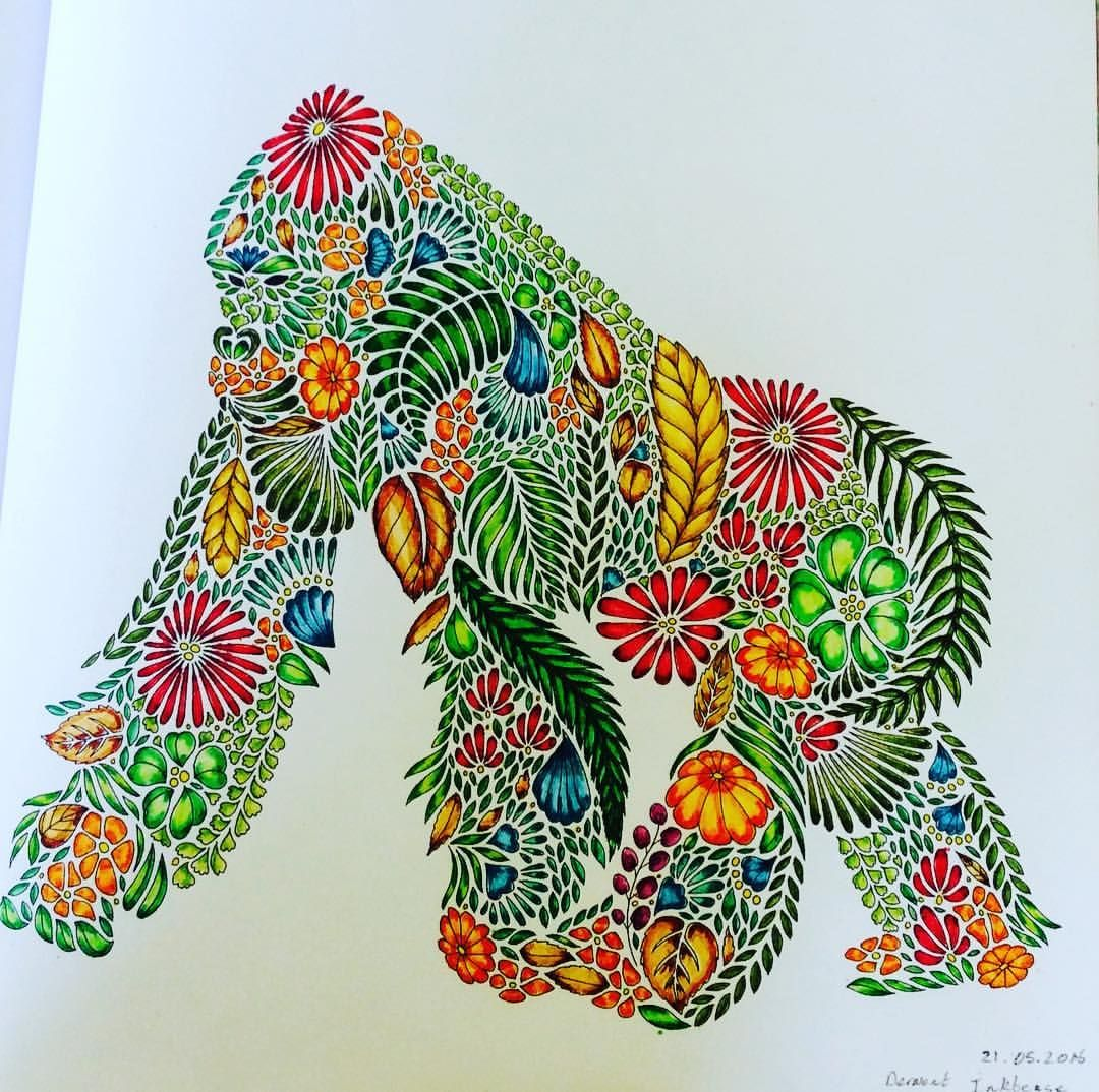 Gorilla From Millie Marotta S Animal Kingdom Coloured Using Derwent I Millie Marotta Animal Kingdom Animal Kingdom Colouring Book Millie Marotta Coloring Book