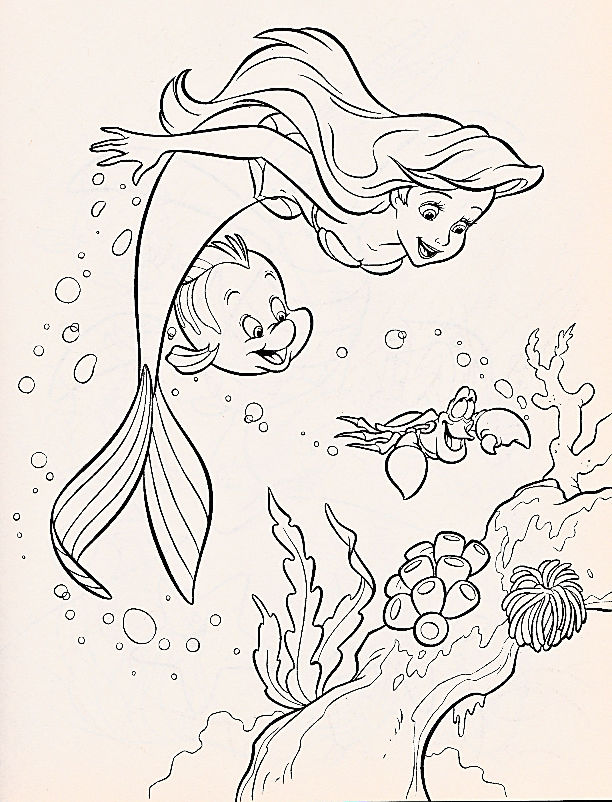 walt disney coloring page of princess ariel flounder and sebastian from the little mermaid hd wallpaper and background photos of walt disney coloring