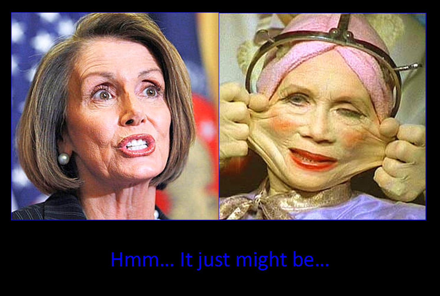Pelosi Or Not Lol With Images Make Me Laugh Lol