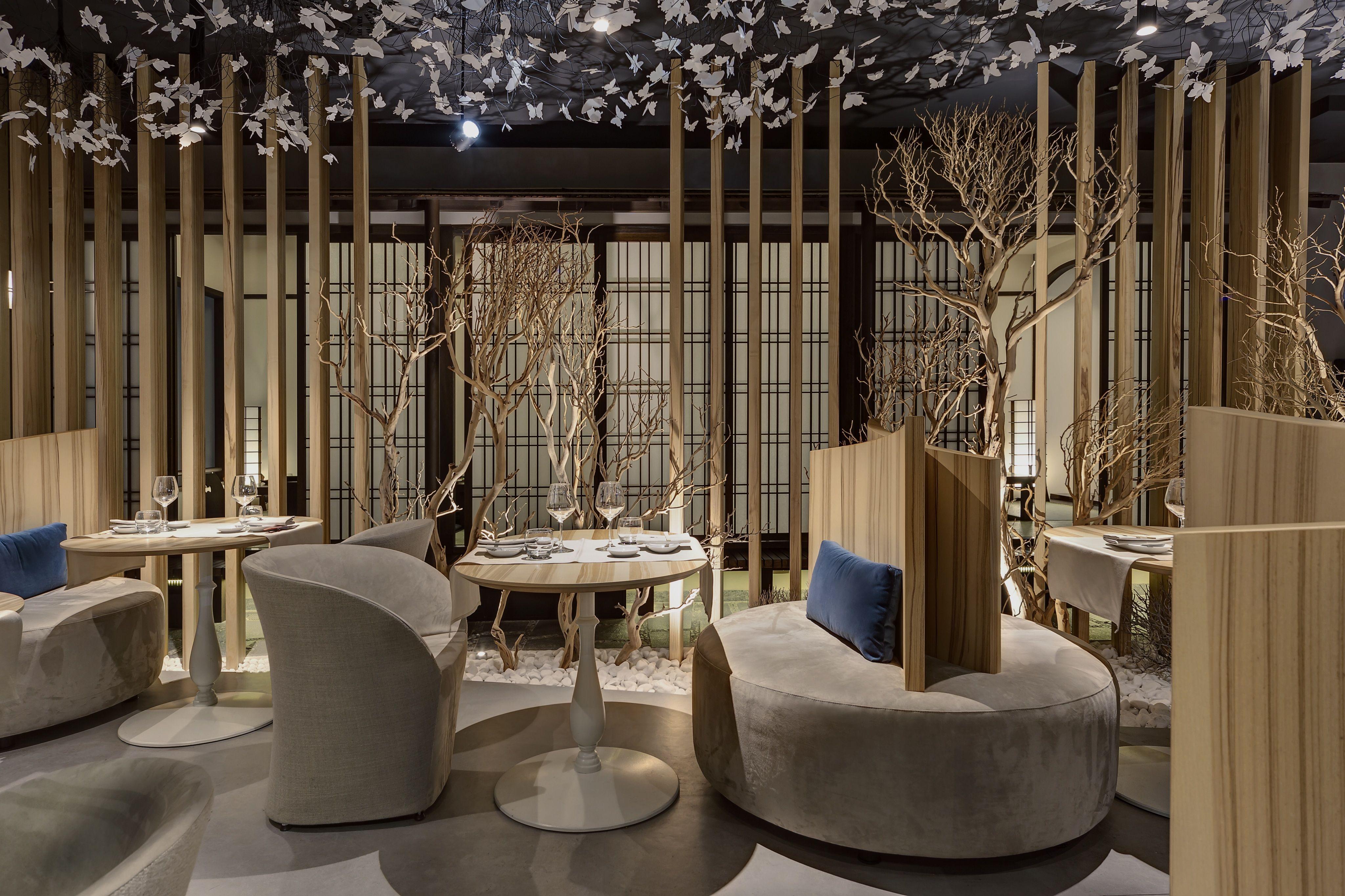 Design Per Ristoranti : Young per bar e ristoranti sedia di design per ristorante