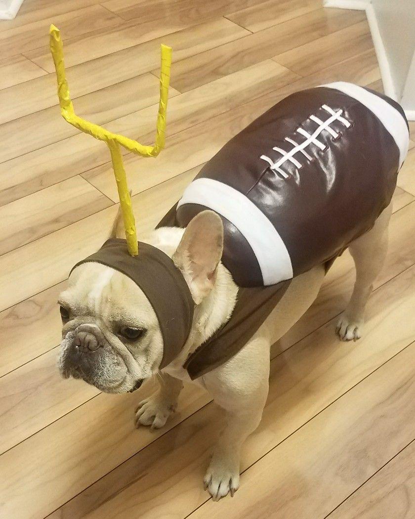 Dog Costumes Football Frenchie French Bulldog Dog Football