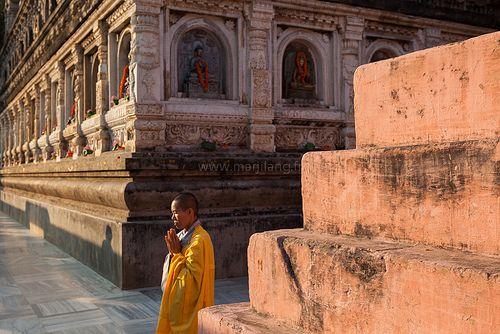 Buddhism, Bodhgaya | Buddhism, Bodh gaya, Buddhist nun
