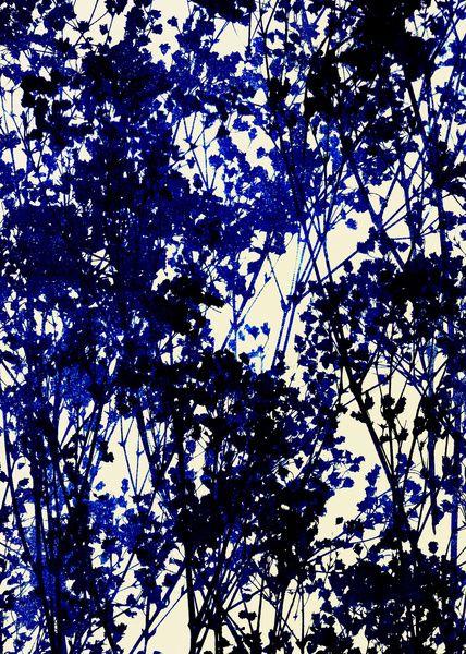 Autumn_Indigo Art Print The Wall Pinterest Autumn, Printing - dunkelblaue kche
