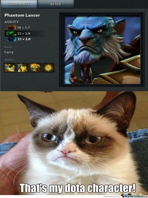 Funny cats today