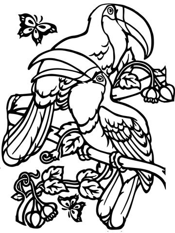 Two Toucans Coloring Page Coloring Pages Bird Coloring Pages