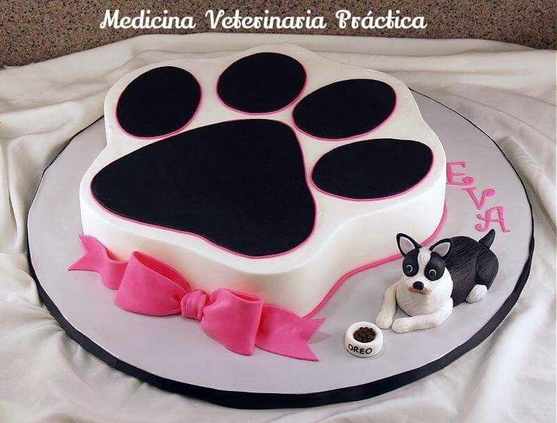 Paw Print Cakes Dog Birthday Cake Animal Buttercream
