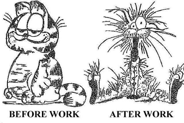 12 hour work shift