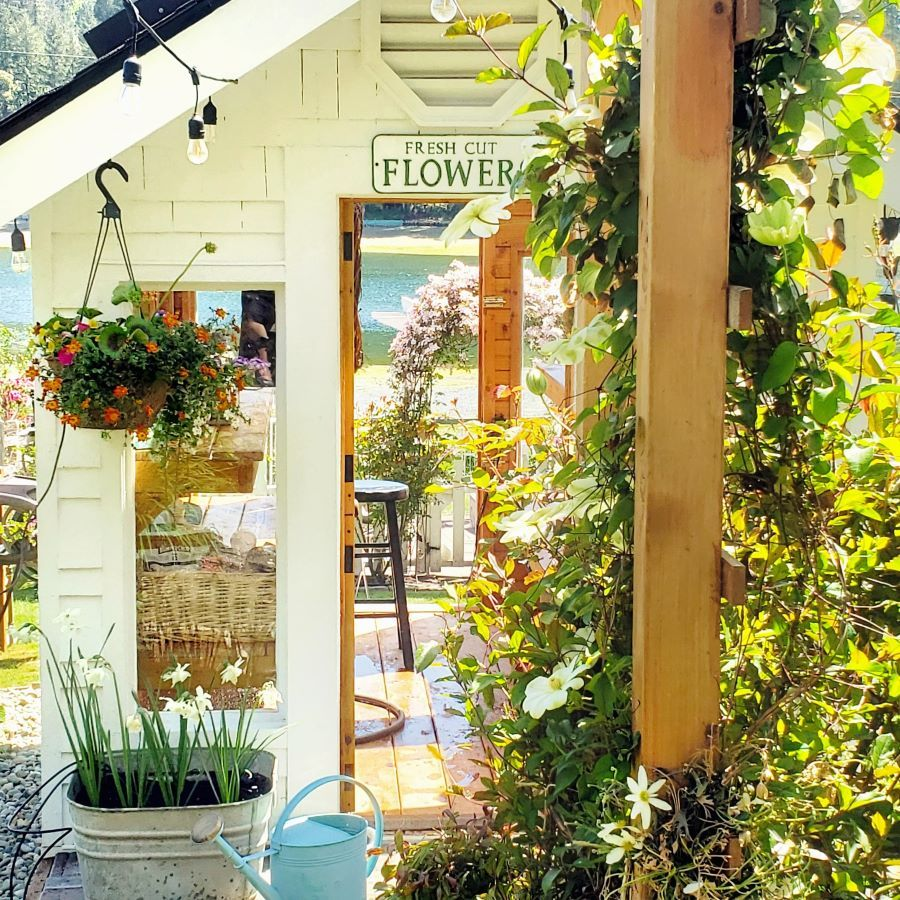 A Greenhouse For Every Season in 2020 Cottage garden