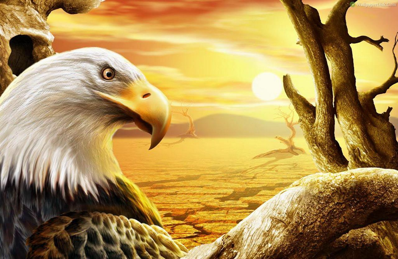 A painting of an eagle in a tree as the sun rises